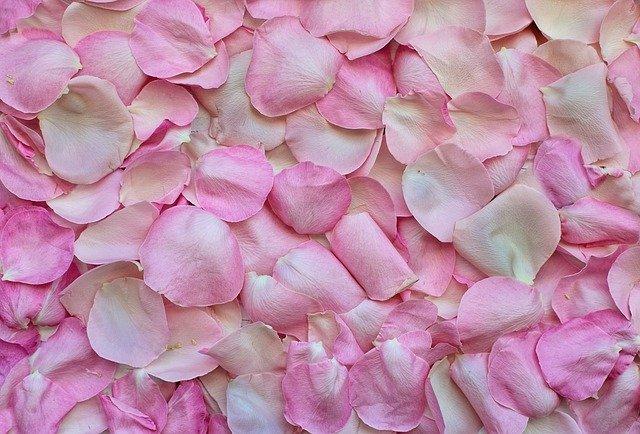 wedding petals